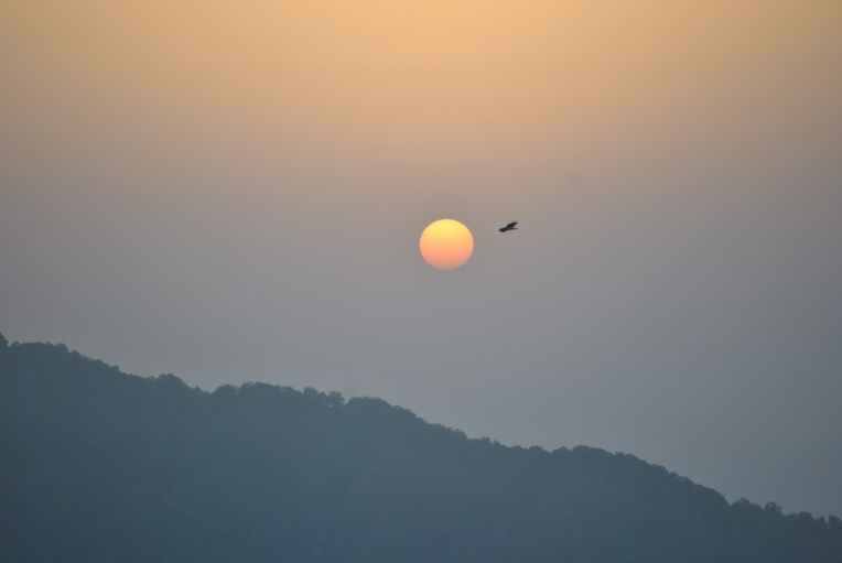 Mussorie Hill Top