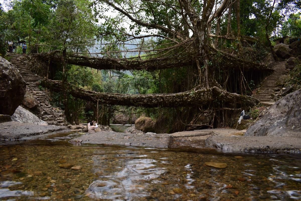 Meghalaya: Part 1